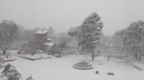 Morgens um 8.00. Vor meinem Fenster tobt ein Schneesturm.