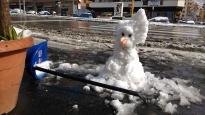 Die Jungs vom Imbiss an der Metrostation haben einen Schneemann gebaut. Zum Schneeschippen wird übrigens alles mögliche genommen. Besen, Schrubber, Schaufel, manche probierens auch mit der Harke ;)
